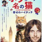 ボブという名の猫のフル動画を無料で視聴する方法!パンドラやデイリーモーションは危険?